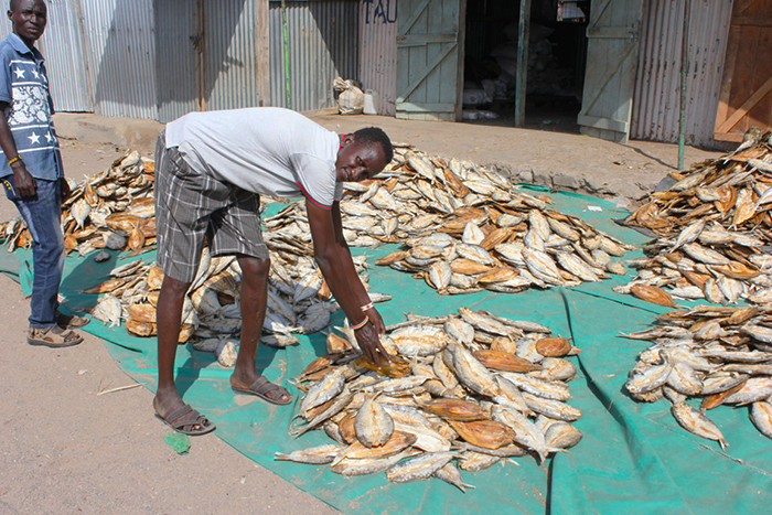 Moses Ekidor, a Turkana fisherfolk peace committee member