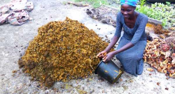 Dickson Boumono, a WORTH participant in Nigeria