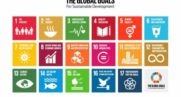 Sustainable Development Goals matrix