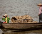 Fishers in the Mekong Delta depend on both aquaculture and capture fishery. Credit: David Bonnardeaux/Pact
