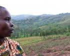 Sophia looks out over her pineapple garden in northern Tanzania.