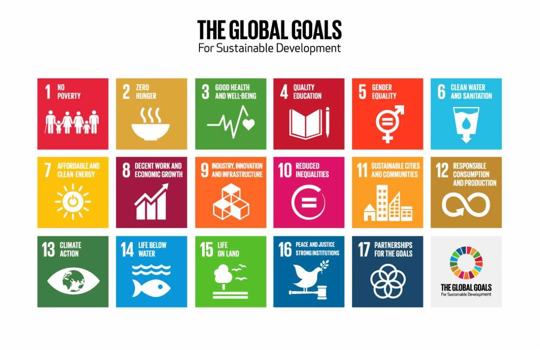 Sustainable Development Goals matrix