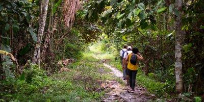 The Colombian Amazon