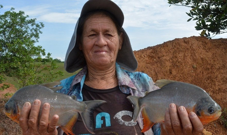 To stem child labor in mining, a village in Colombia turns to systemic solutions – and fish