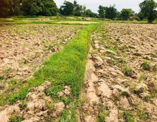 Monitoring the Mekong drought